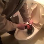 東京都の方必見!トイレのつまりで弊社が選ばれる5つの理由